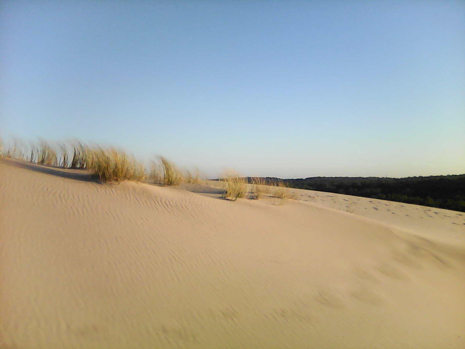 Randonnée pédestre au Sud de Lacanau