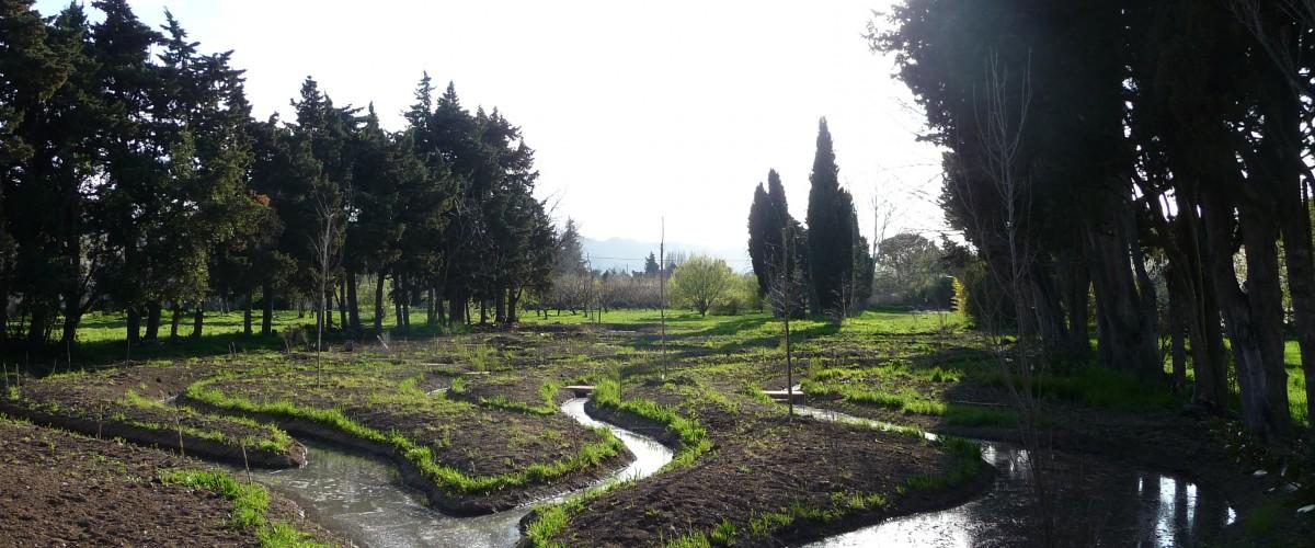 Découvertes thématiques de nos jardins au cœur des Alpilles