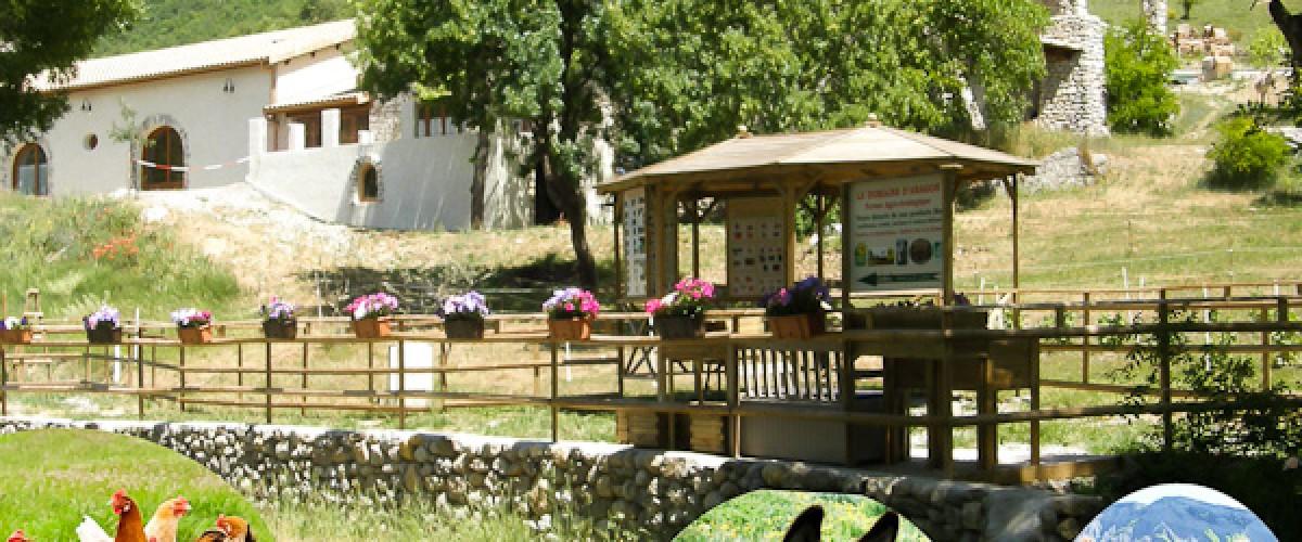 Visite d'une ferme bio près de Sisteron avec une agricultrice passionnée !