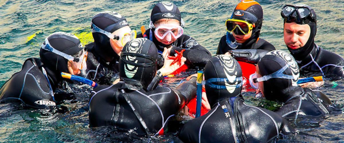 Randonnée palmée guidée (snorkeling) dans les Calanques
