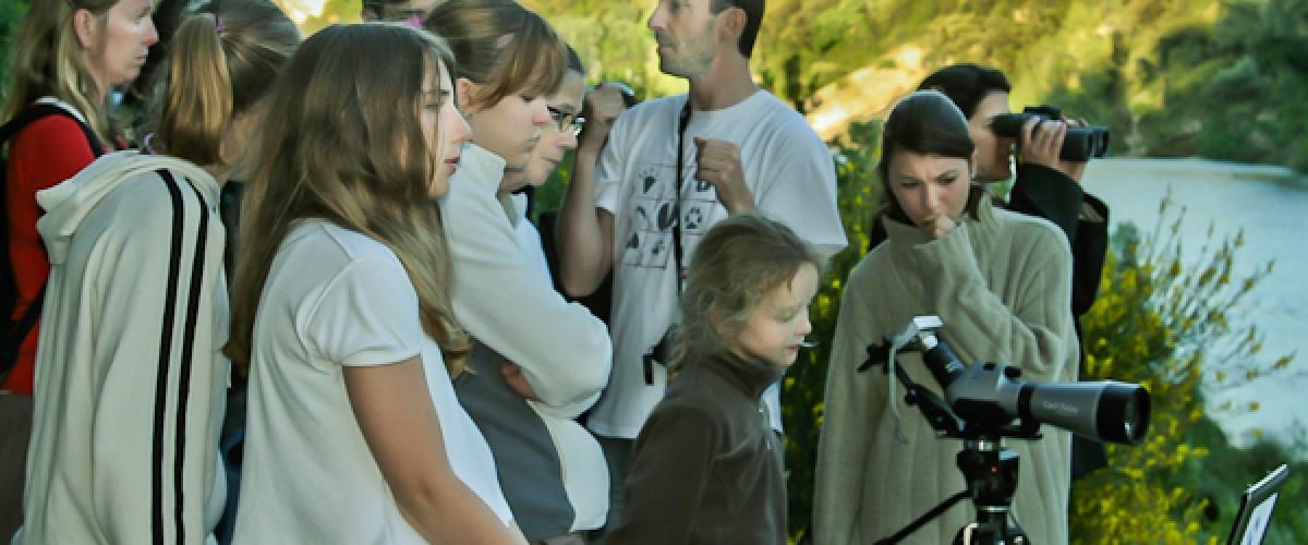 Découverte du Castor dans son milieu naturel dans le Gard