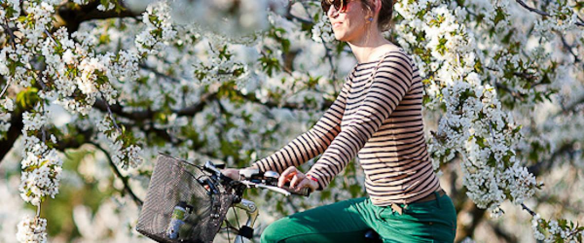 Découverte du Luberon à vélo électrique, au départ de Bonnieux