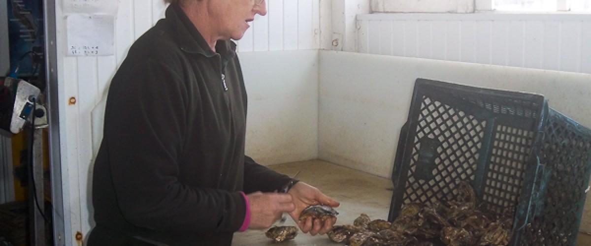 Visite d'une ferme ostréicole artisanale à Royan