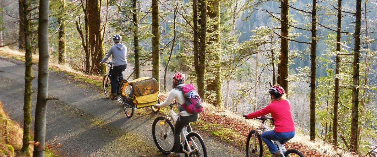 La vallée des lacs dans les Vosges en VTT ou VTC à assistance électrique
