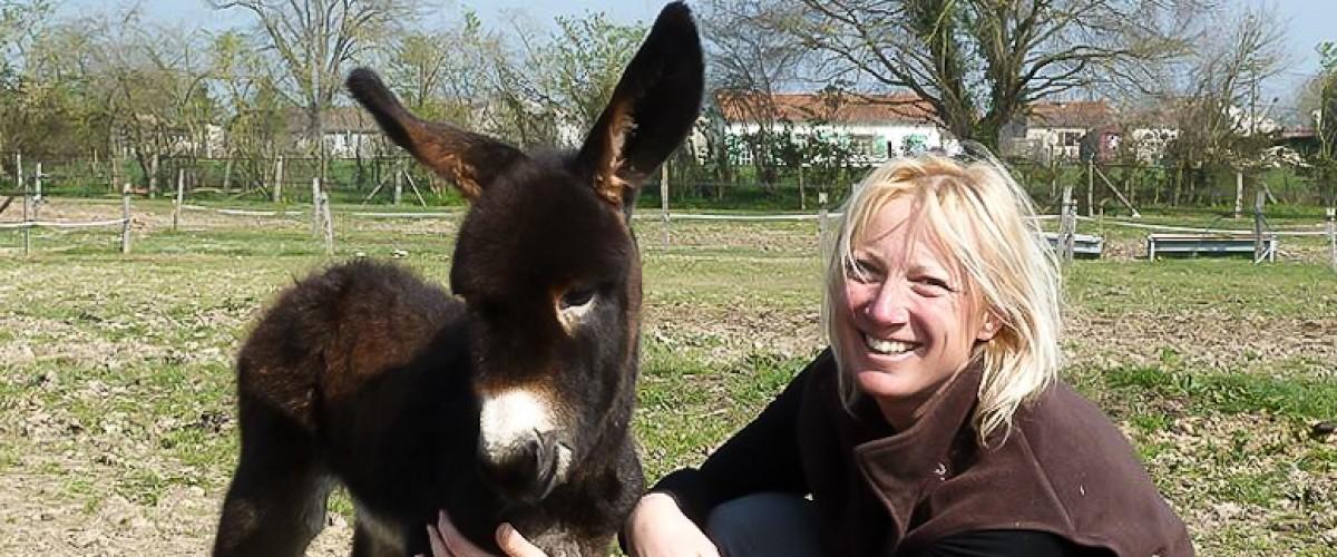 Promenade à dos d'âne en famille dans le Marais Poitevin