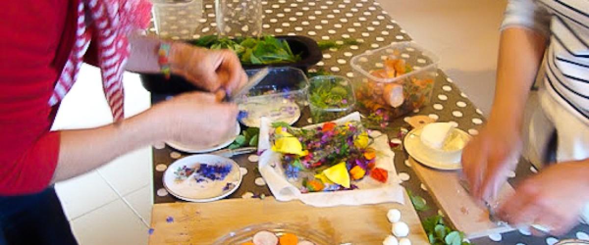 Journée cueillette et cuisine de plantes sauvages avec repas dans les Vosges