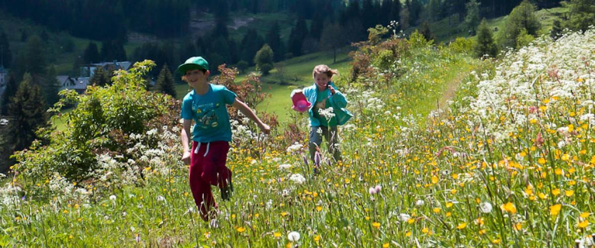 Séance photo personnalisée et insolite à Chamonix !