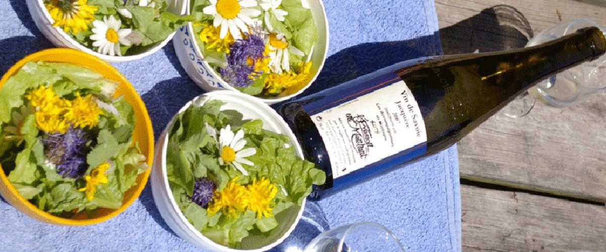Plantes sauvages comestibles de Savoie : cueillette et dégustation