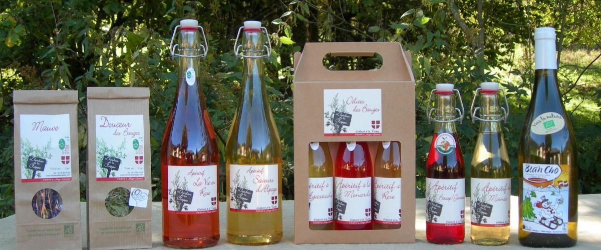 Au cœur d'une ferme de plantes médicinales et aromatiques en Savoie