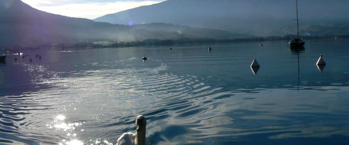 Balade guidée conviviale en 2CV autour du lac d'Annecy