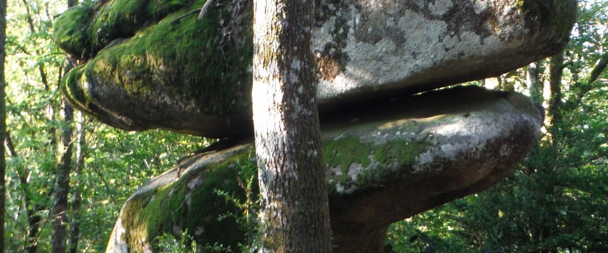 Journée randonnée découverte du Sidobre, près de Castres