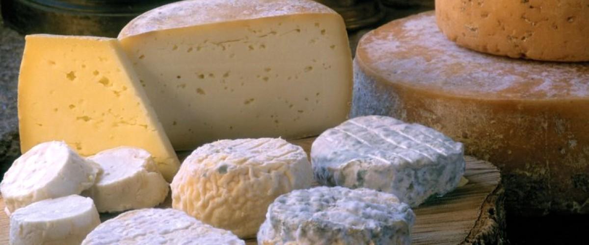 Dégustation de vins et fromages italiens, dans les Alpes françaises