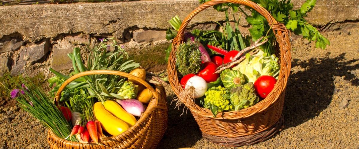 Visite et repas à la ferme en Haute Loire