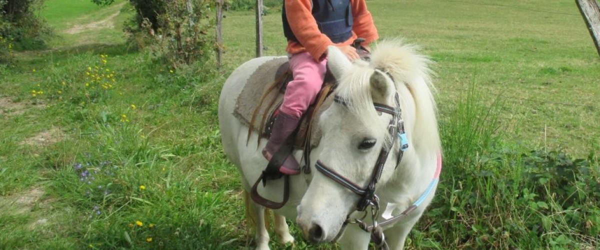 Balade à poney pour enfant dans les Vosges