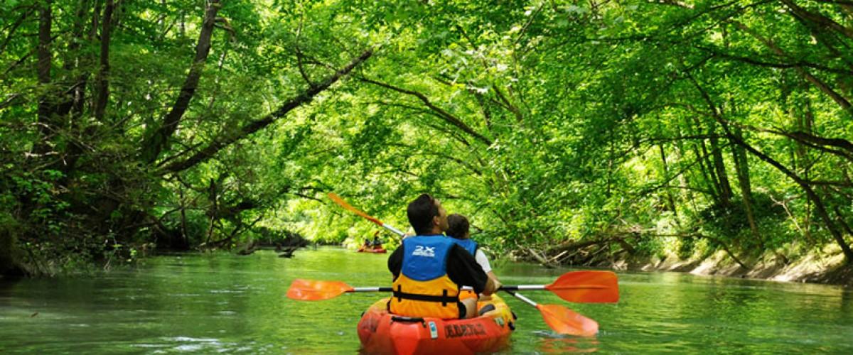 Découverte du Gave d'Oloron à bord d'un canoë en eau calme