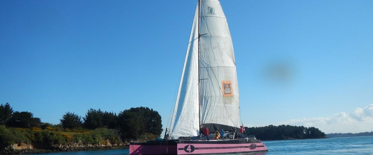 Apéritif au coucher du soleil catamaran au Golfe du Morbihan