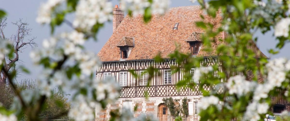 Visite et dégustation dans un domaine cidricole près de Rouen