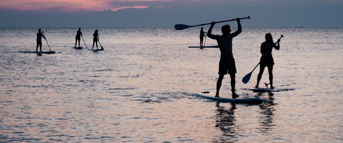 Balade et apéro paddle au coucher du soleil