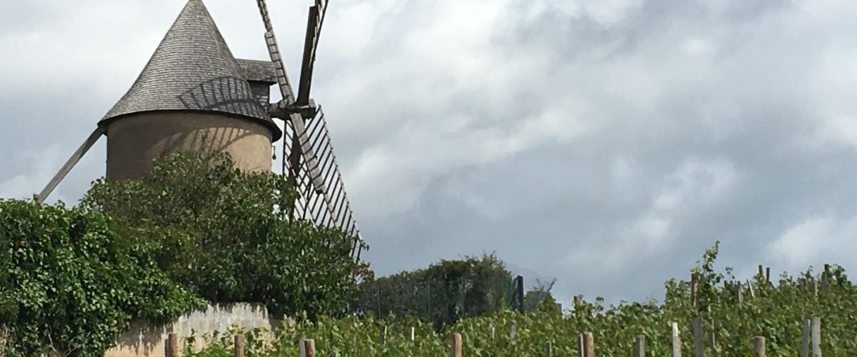 Partage autour du Beaujolais Crus excursion privatisée