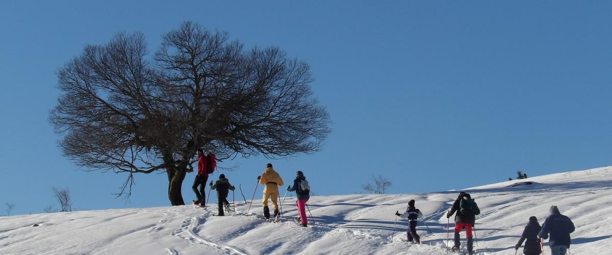 Initiation à la raquette à neige en famille