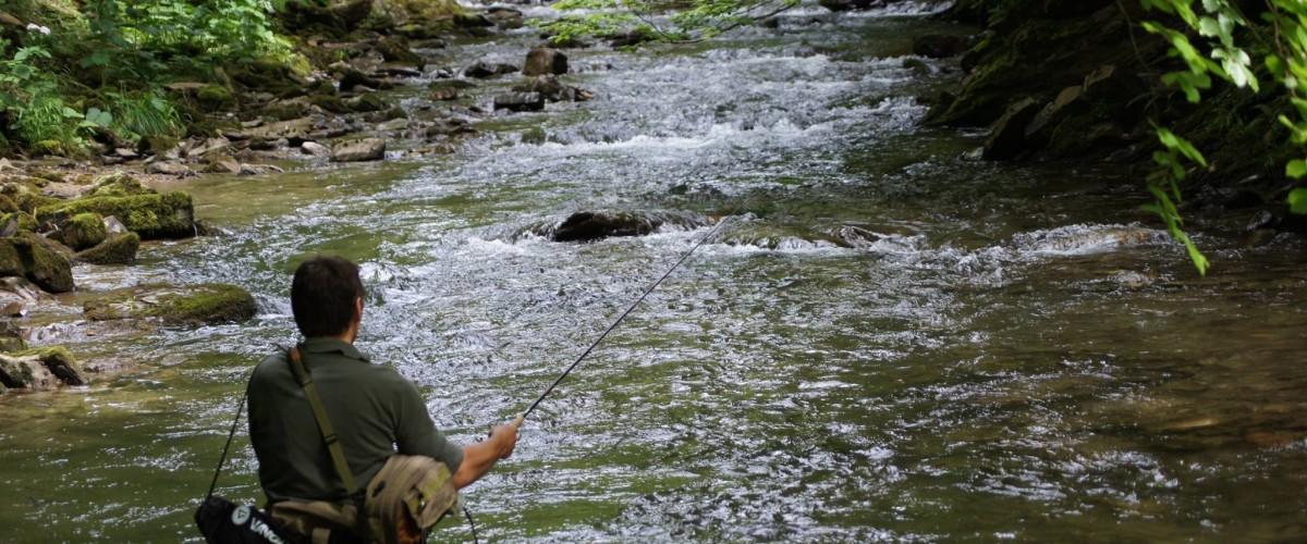 Une journée de pêche sur les traces d'Ernest Hemingway