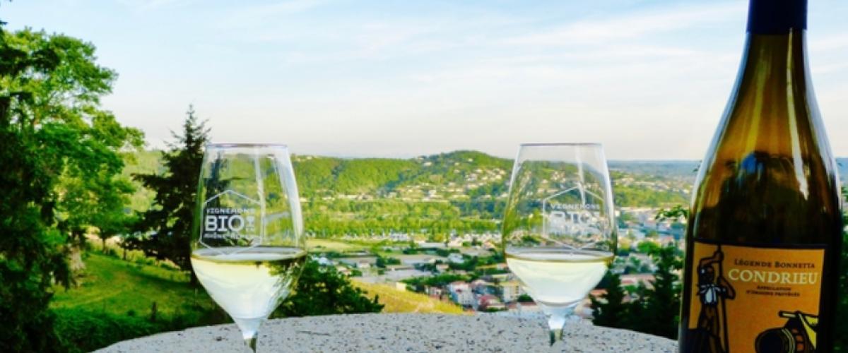 Excursion privatisée à la journée dans la vallée du Rhône