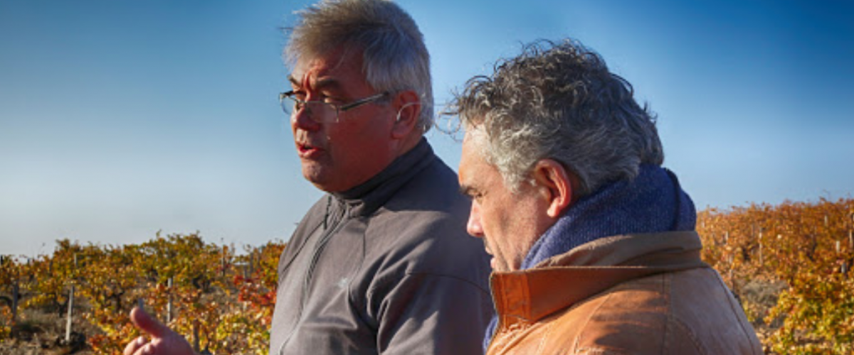 Wine Safari des grands noms des Côte-du-Rhône