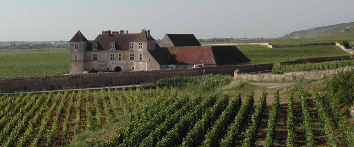 Visite du vignoble de la Côte de Nuits en 4x4