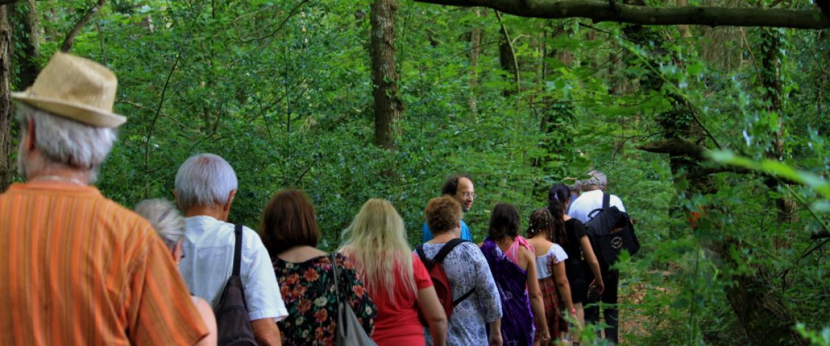 Balade contées en forêt à Hennebont