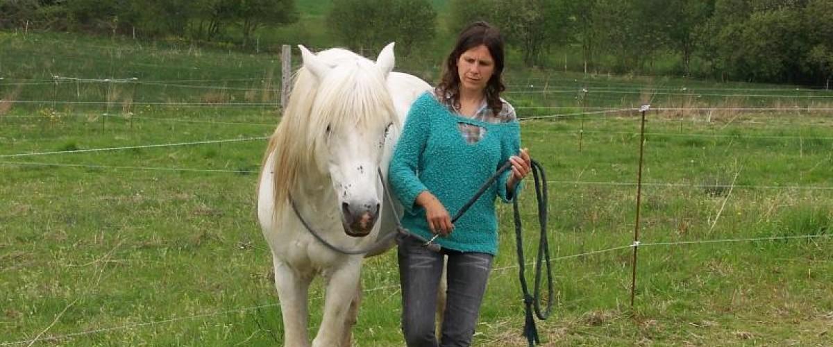 Méditation avec le cheval à Hennebont