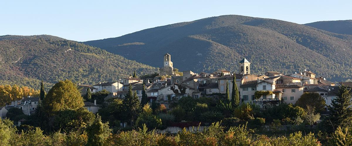 Comprendre la truffe : visite et dégustation en Provence