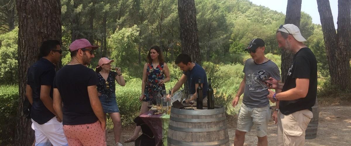 Visite d'un domaine biologique au cœur des Côtes de Provence