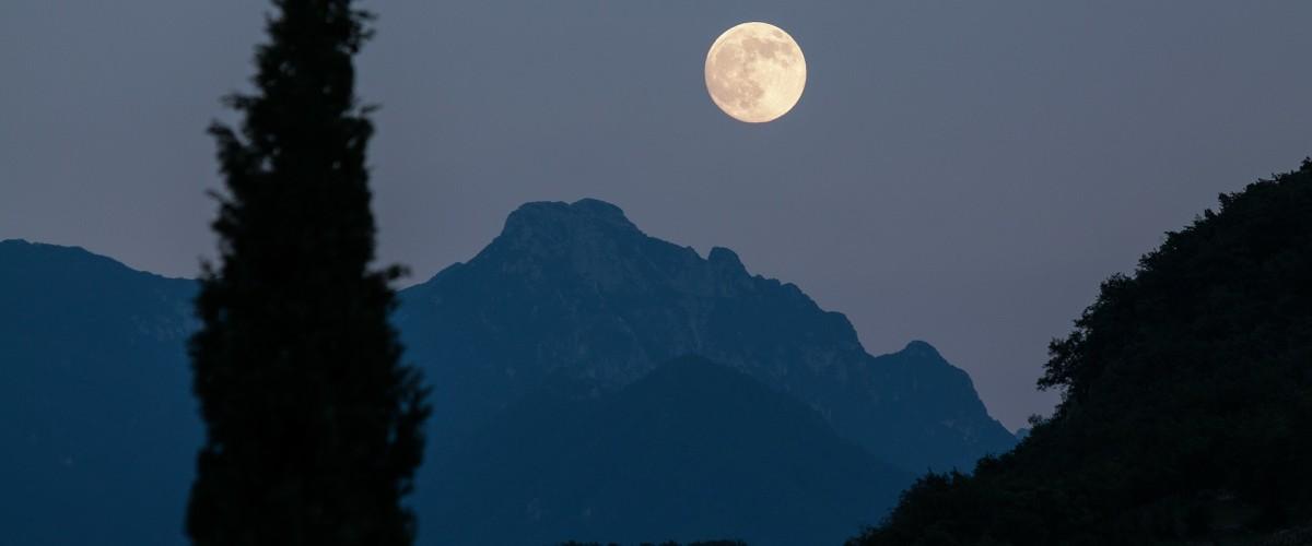 Randonnée Nature de Nuit