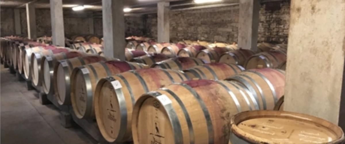 Visite d'un domaine viticole et dégustation de vins à Beaune