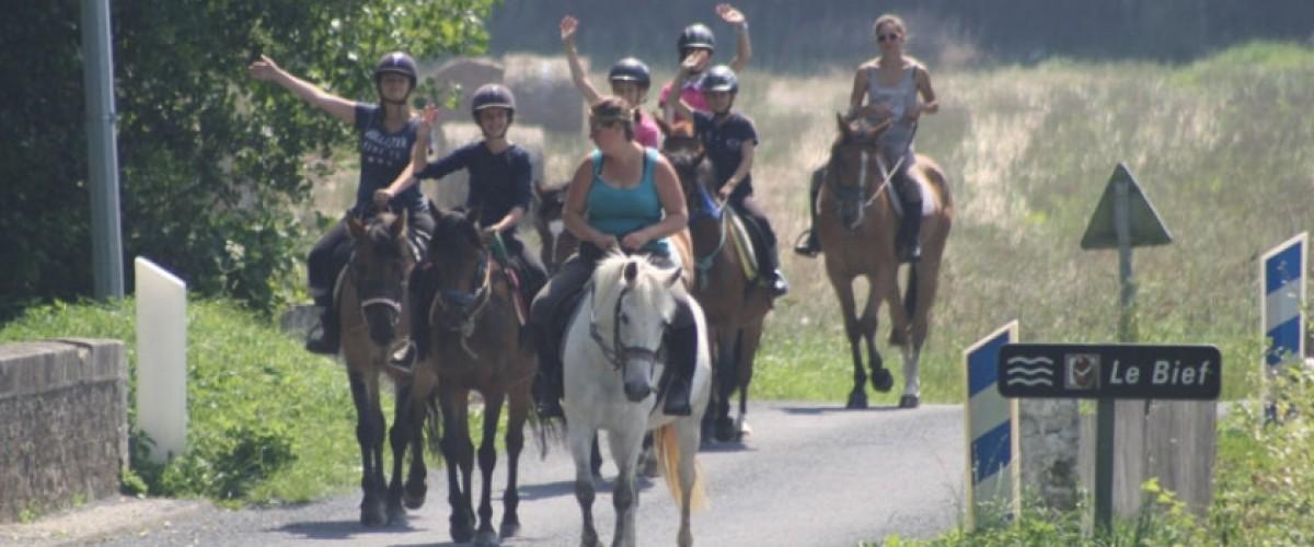 Promenade à cheval en pleine nature, en famille ou entre amis !