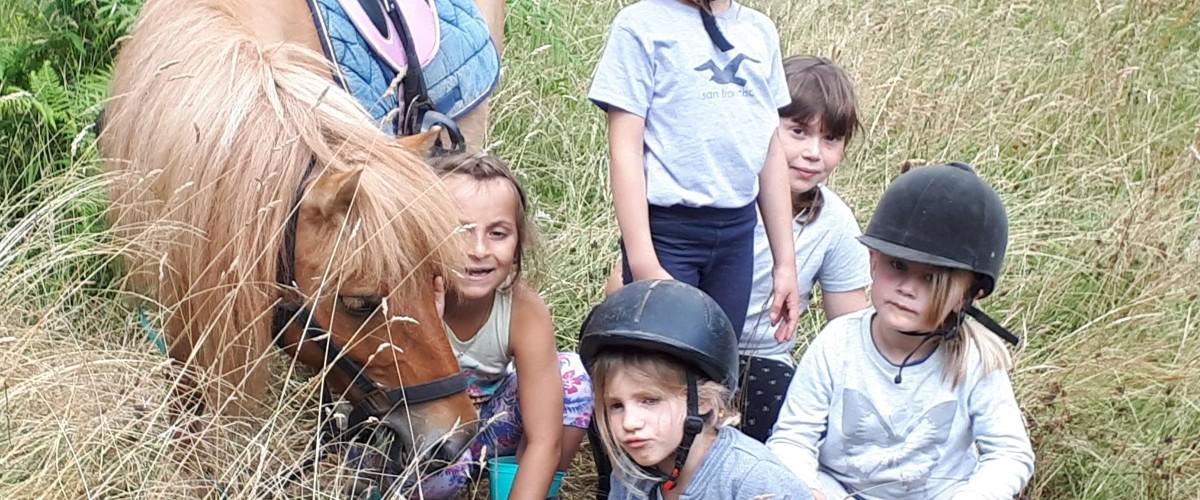 Promenade à poney pour les enfants