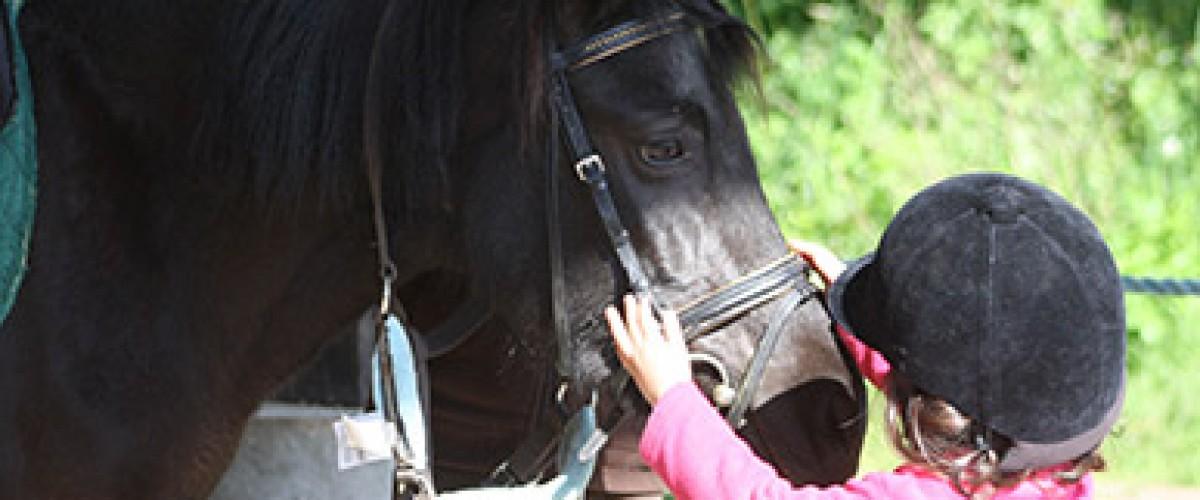 Initiation au baby poney pour les enfants