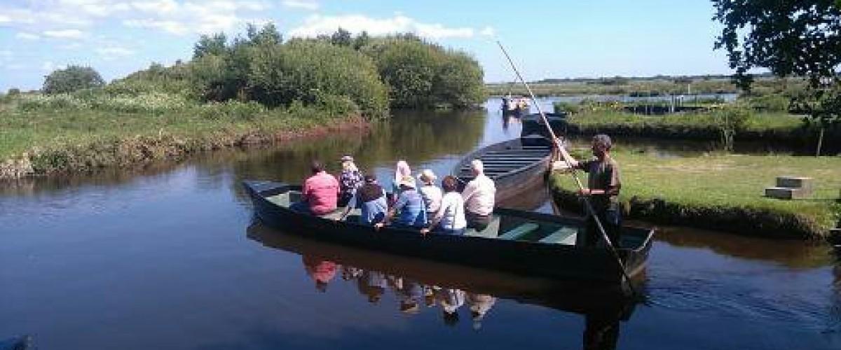 Découverte du marais de Brière en barque et en calèche en Loire-Atlantique