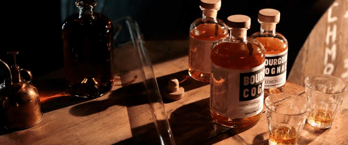 Découverte du domaine et dégustaion de 5 Cognacs