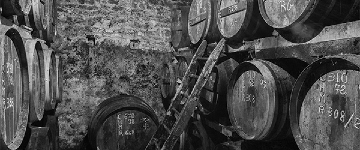 Visite guidée d'une production de cognacs et dégustation privée