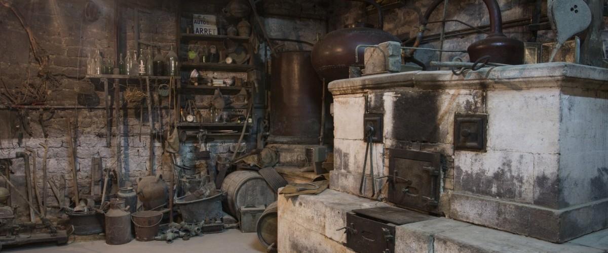 Immersion d'une demi-journée dans un domaine de Cognac avec la maître de chai