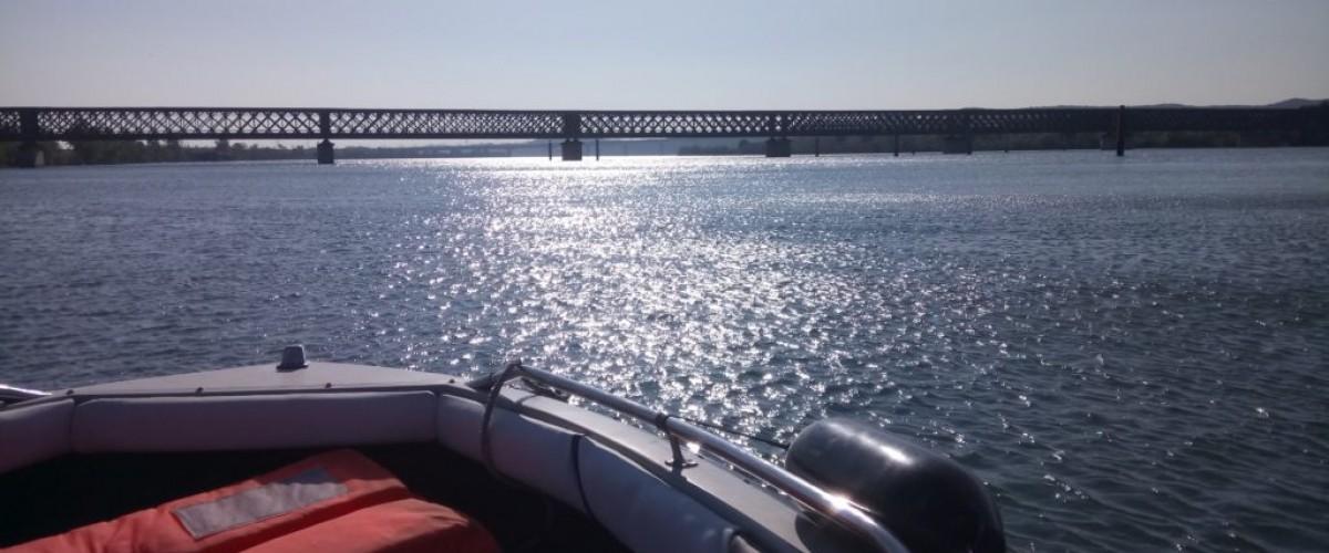 Baptême de hors bord sur le Rhône Proche d'Avignon