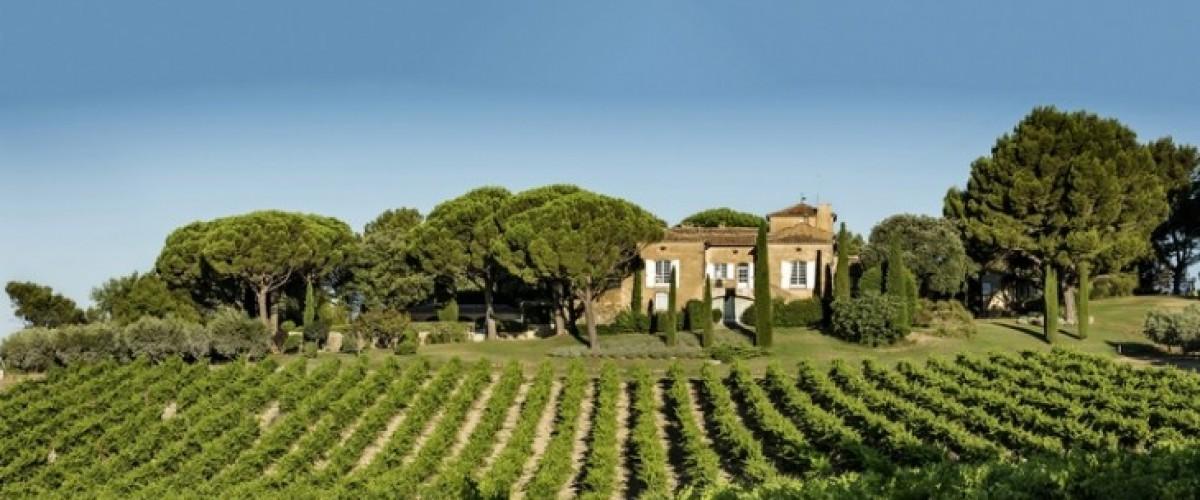 Visite de domaine et accord mets et vins