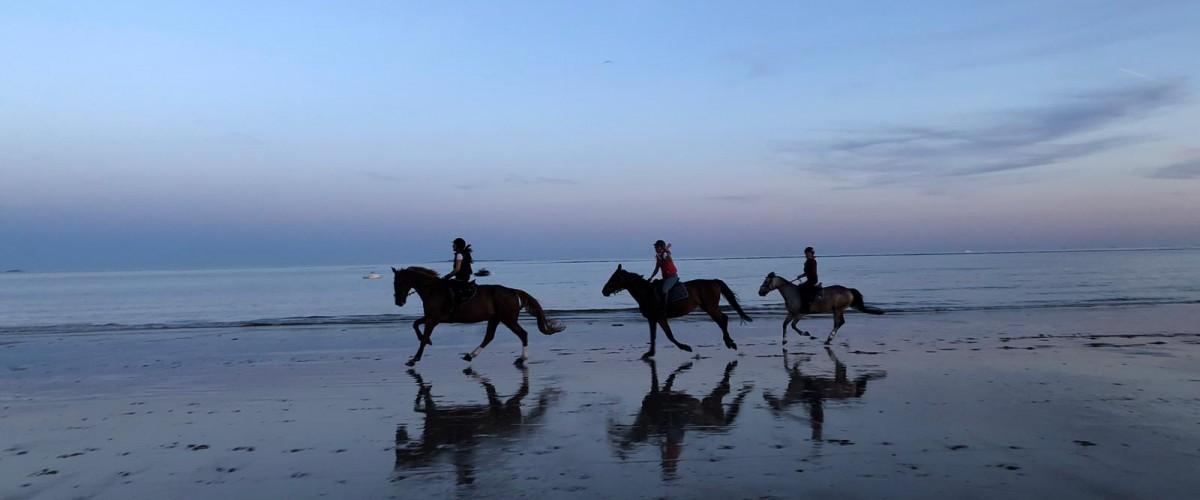 Balades à cheval sur la plage