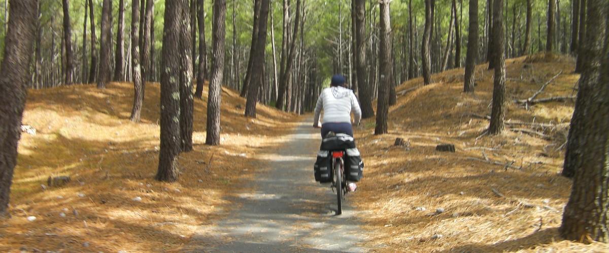 Balade en vélo spéciale enfant dans la nature