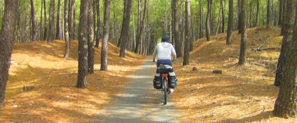 Randonnée à vélo à Lacanau