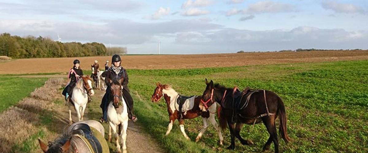 Balade insolite à cheval dans la Somme
