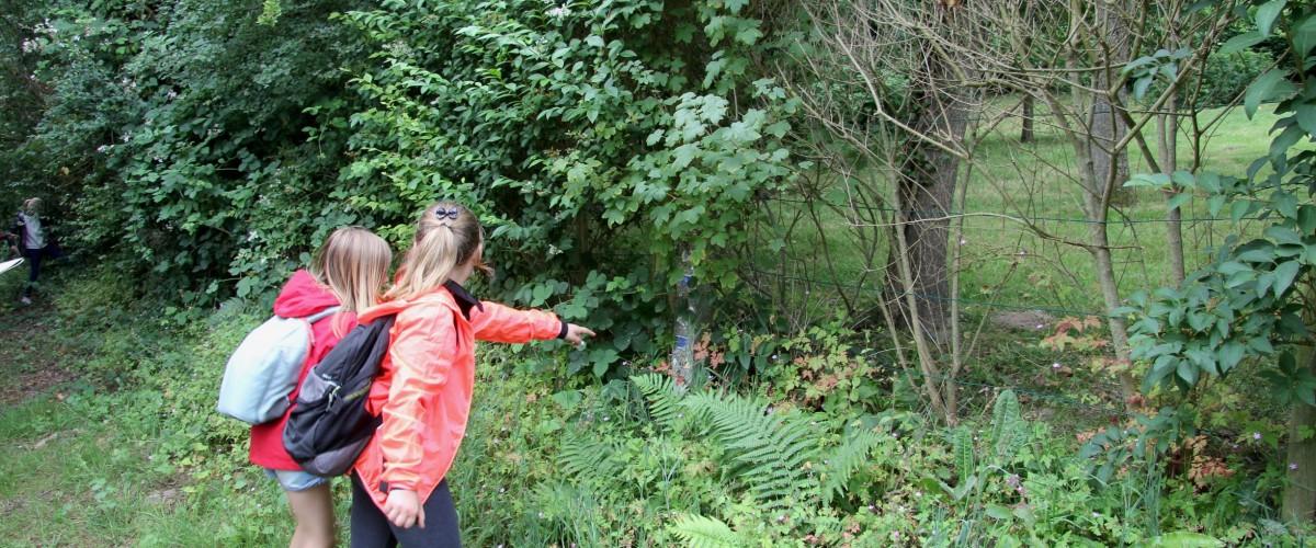 Randonnée mystère Les Villas du Bois de Cise