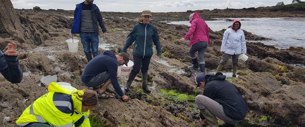 sortie algues à la pointe de trévignon