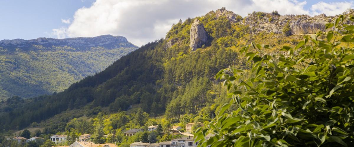 Randonnées à cheval dans le superbe massif de la Sainte-Baume !